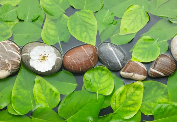 Atem und Meditation 19.09.2020 10 – 13h